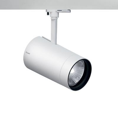 Palco spotlight large